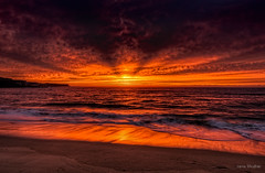 Reach out and touch somebody (JustAddVignette) Tags: ocean light sea sky sun seascape beach water clouds sunrise reflections dawn landscapes early sand waves sydney australia newsouthwales coogee goldensands nosun seawater beforedawn easternsuburbs flamingsky cloudysunrise