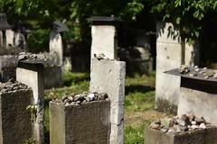 Remuh Synagogue Cemetery, Krakow (jacques_teller) Tags: cemetery nikon synagogue poland krakow jewish tombstones ghetto kazimierz cracovie pologne nikonian nikonistas remuh d7200