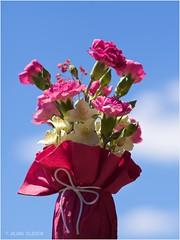 Petit bouquet de mai