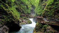 Vintgar Gorge (sigi-sunshine) Tags: bridges slovenia bled gorge schlucht brcken julianalps gorenjska vintgar soteskavintgar wildwasser slovenien woodenbridges klamm julischealpen podhom holzbrcken