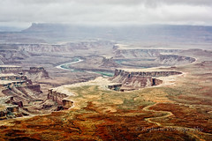 Mesmerizing Landscapes (Roshine Photography) Tags: river landscape utah us unitedstates outdoor canyonlandsnationalpark moab meandering pentaxk3ii 2016utahtrip