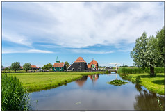 Zaanse Schans De Haal (voorhammr) Tags: gras zon zaanseschans zaandam molens 2016 vakwerk huisjes blauwelucht jolandakraus