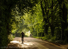 On My Way to Work (Jack Straws Lane) (BobMah) Tags: morning spring commuting 7d2 jackstrawslane