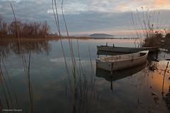 Boats (Massimo_Discepoli) Tags: italy lake water reflections umbria trasimeno