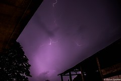 Thunderstorm (plane-spotter31) Tags: pink blue trees light cloud storm black tree nature night clouds photography twilight long exposure photographie thunderstorm