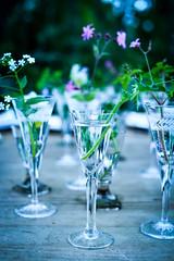 Lunch i Lottas vxthus (sarnborg) Tags: flowers summer glas sommar vxthus fotosondag fotosndag fs160529