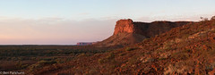 Kennedy Range National Park, Western Australia (BenParkhurst) Tags: kennedy range national park rock geology cliff plateau sandstone red sunrise arid shrubland western australia wa