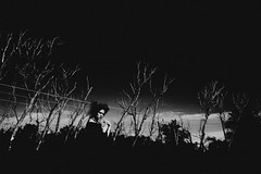 (emmakatka) Tags: trees sunset shadow portrait sky blackandwhite woman face field clouds self dark dead scary eyes darkness country creepy figure northdakota witchy deadtrees emmakatka