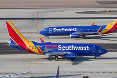 Southwest Airlines Boeing 737 N422WN -Shark Week--2533 (rob-the-org) Tags: iso100 noflash f90 cropped boeing decals 737 southwestairlines terminal4 phx discoverychannel phoenixaz sharkweek 110mm kphx 1160sec skyharborinternational n422wn parkinggaragep8