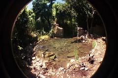 The roman ruins at Olympos (kitty b wonderful) Tags: 2 film lomo ancient ruins roman fisheye analogue olympos olimpos