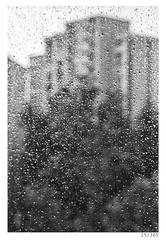 rainy sunday (Alja Ani Tuna) Tags: blackandwhite bw white black home window rain outside drops day year sunday 15 slovenia raindrops ljubljana inside nikkor f18 dailyphoto d800 85mmf18 project365 nikkor85mm 15365 photo365 onephotoaday nikond800