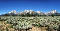 Teton Range (tschoun.) Tags: travel usa nationalpark roadtrip wyoming teton grandteton