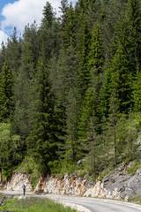 IMG_0861-283 (Martin1104) Tags: fotografie natuur bergen landschap vlinders yagodina snp bulgarije natuurfotografie natuurreis