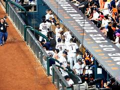 Astros Dugout Carlos Correa (Gary Paul Smith) Tags: park baseball year houston carlos national astros maid dugout rookie league minute mlb correa garysballparkblog imagesbygarypaulsmith