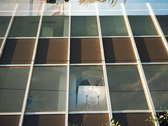 (marc ramoneda) Tags: camera city film pen 35mm polaroid high 28mm olympus definition hd halfframe expired 35 mallorca palma 100iso gesa ee2 122007 marcramoneda