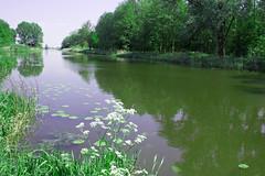 FA_019 (Dutch_Chewbacca) Tags: nature netherlands spring fort sunny dijk brabant 1877 landschap 1880 waterlinie nieuwe 1847 altena brabants hollandse uppel gantel uppelse schanswiel