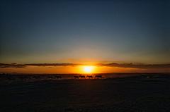 A Sunset in Amboseli, Kenya!!! (salil_sahani) Tags: nature nikon kenya wildlife sunsets wideangle scapes amboseli nikond300 salilsahani salilsahaniphotography
