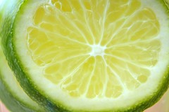 Lime (Treesha Duncan) Tags: macro green yellow fruit citrus lime sonya550