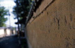 The clay wall of an ancient city 2016/05 No.1(taken by film camera). (HIDE@Verdad) Tags: 50mm fuji nikkor provia nikonf3 ai f12 100f