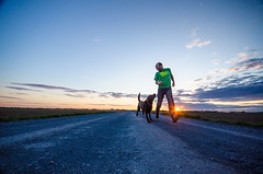 Running with my dog (Noemilag) Tags: sunset dog chien canada landscape labrador quebec action outdoor expression horizon running run retriever chocolatelab ciel qubec labradorretriever mansbestfriend paysage runner noemi montrgie boudha gosselin marieville monteregie laganiere