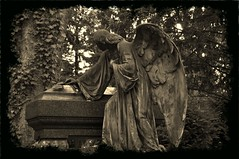 Cimetire des anges (NoireRose) Tags: friedhof nikon religion engel cimetire flickrandroidapp:filter=none