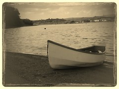 Waterman on the Teign (Ipple Pen) Tags: flickrandroidapp:filter=wallaby