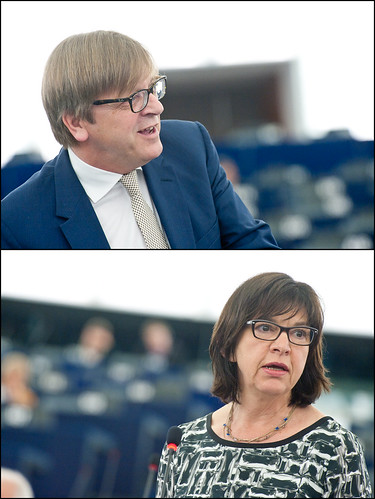 MEPs warnings on next EU Summit priorities (Guy Verhofstadt, Rebecca Harms)