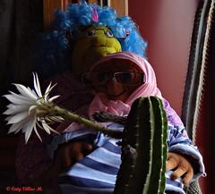 Amor al atardecer (Caty V. mazarias antoranz) Tags: españa spain galicia cielos atardeceres pontevedra evenings anocheceres islascíes porlanoche porlatarde ofacho