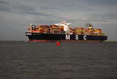 MSC Ariane (larry_antwerp) Tags: netherlands ship vessel container schelde schip rilland mediterraneanshipping 9484443
