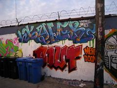 TYLER PNUT (Billy Danze.) Tags: chicago money boys graffiti tyler