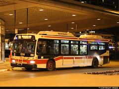 Toronto Transit Commission #1259 (vb5215's Transportation Gallery) Tags: toronto ttc transit orion ng commission vii 2007 hev