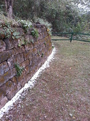 Nieve en las Yungas (Comunidad Ledesma) Tags: parque naturaleza snow forest natural nieve bosque papel nacional rare azucar jujuy reserva increible ledesma calilegua blaquier