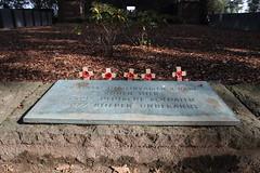 German mass grave, Langemarck, 27 September 2013 (ed_needs_a_bicycle) Tags: belgium worldwarone greatwar firstworldwar flanders massgrave 2013 langemarckgermancemetery sigmadc1770mmf284macrohsm
