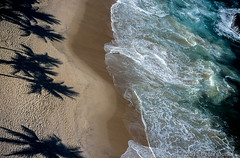 Rio de Janeiro beach late in the day (speedcenter2001) Tags: ford beach rio canon honda palms eos lola racing velvia toyota firestone cart provia oval filmscan champcar formulaindy reynard openwheel speedcenter rio200 emersonfittipaldispeedway