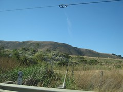"Hills Near Monterey • <a style=""font-size:0.8em;"" href=""http://www.flickr.com/photos/109120354@N07/11042926516/"" target=""_blank"">View on Flickr</a>"