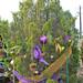 Trees_of_Loop_360_2013_081