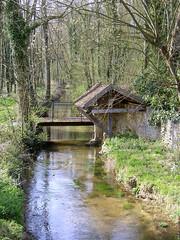 Le Sausseron - Vallangoujard (ericbeaume) Tags: landscapes arbres paysages ericbeaume