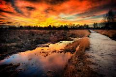 Reflection (TechDissected) Tags: bridge sunset red orange nature water netherlands yellow contrast landscape nationalpark warm path serene peel relaxed brabant limburg