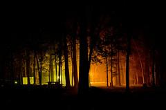 Camping 12.21.13 (svllcn) Tags: camping 35mm nikon lr3 d5100 campingfall2013
