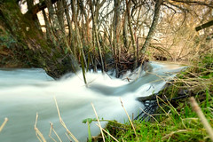 Too much water, not enough stream. (Amy Louise Moore) Tags: tree mill nature river flow sussex 1 waterfall xpro woods stream wildlife centre under over roots reserve growth milky fujinon floods 18mm
