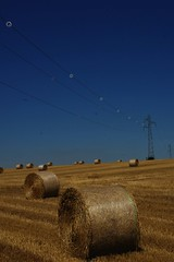 (ben ot) Tags: summer burgundy champs harvest haystacks fields t cereals bourgogne moisson crales bottesdepaille   aot2013