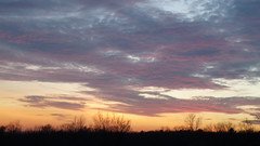 P1100297 (A Million Shards of Light) Tags: pink blue trees sunset sky orange moon ice nature clouds twilight peace dusk connecticut horizon atmosphere february fairfield easton cirrus vision:sunset=0831 vision:outdoor=095 vision:sky=0989 vision:clouds=0976 vision:car=0753