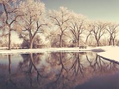 (Holiday Cole) Tags: landscape colorado noir dream surreal vision soul poet breathe dreamer 303magazine campvibes
