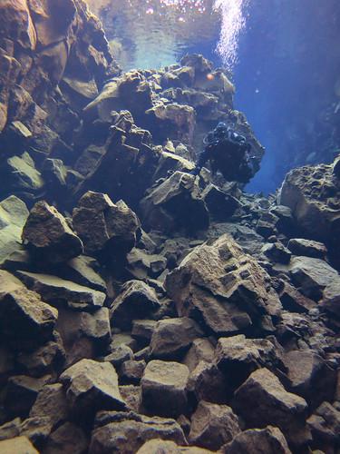 Iceland 2014 - Silfra dive - IMG_0569