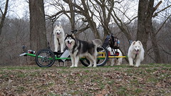 """Princess (In the Back) Is So Animated 1 • <a style=""""font-size:0.8em;"""" href=""""http://www.flickr.com/photos/96196263@N07/14199573045/"""" target=""""_blank"""">View on Flickr</a>"""
