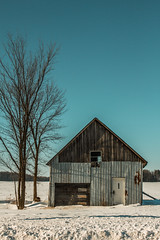 L'oubli (Farnsworth Photographies) Tags: winter snow tree nature barn season hiver neige arbre grange saison