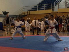 stefanou_15_5_2016_knockdown_185