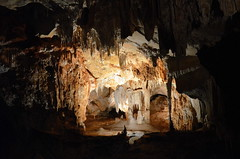 Multitude of speleothems in Wombeyan Caves