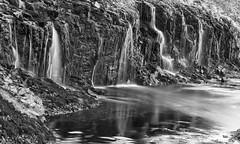 when frolicking fairies fancy a fresh fountain (lunaryuna) Tags: longexposure bw nature monochrome beauty season landscape puddle blackwhite iceland spring rockface le waterfalls lunaryuna lichens mosses westfjords naturaltextures fairytalelandscape seasonalwonders
