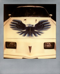 Firebird (tobysx70) Tags: california ca blue toby white color bird classic film car silver project polaroid sx70 photography for los am automobile angeles muscle headlights canyon hills tip cameras hollywood frame type firebird instant hood pontiac decal hancock trans expired edition 1979 impossible beachwood the impossaroid